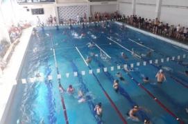 Чемпионат Сочи по плаванию среди действующих пловцов 2019
